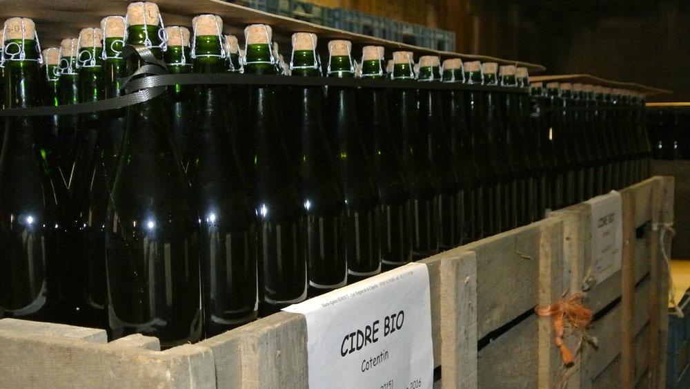 Bouteilles à la cave de Cidre Cotentin AOC Hérout